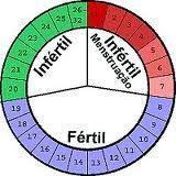 Metodo Del Calendario.Metodo Del Calendario Metodos Anticonceptivos